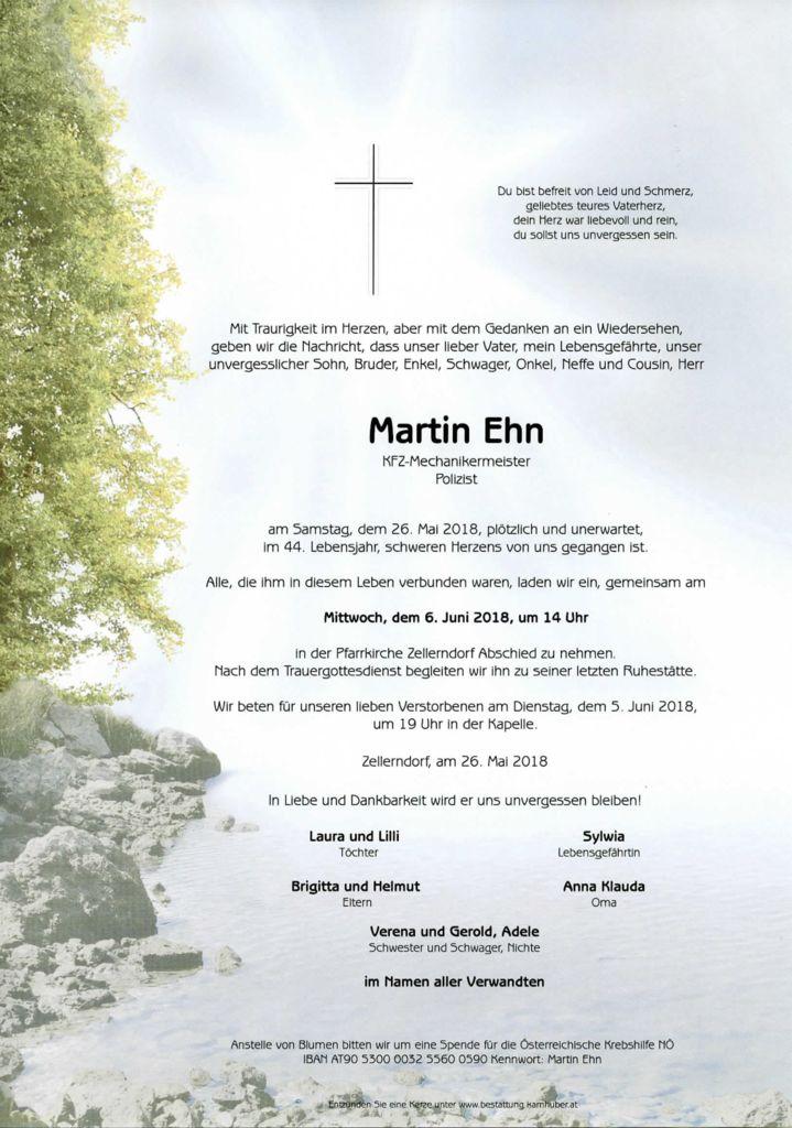 thumbnail of Parte_Martin_Ehn