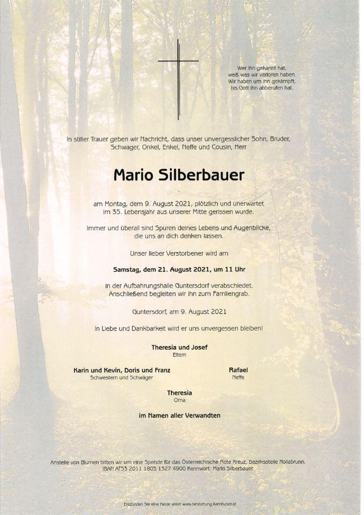 th bnail of Parte Mario Silberbauer